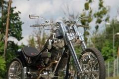 custom-plener-34